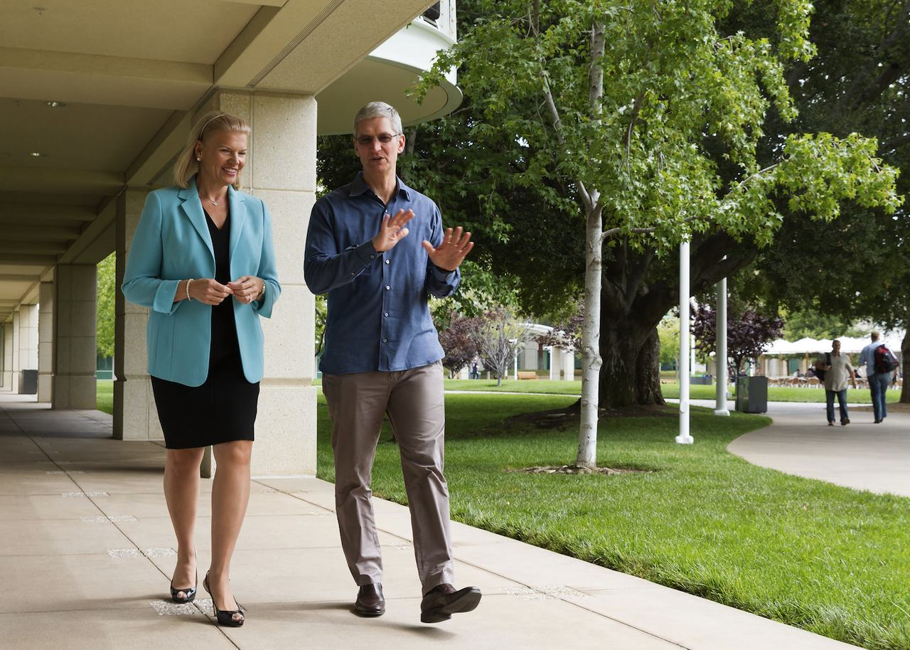 Virginia Rometty CEO IBM Tim Cook CEO Apple